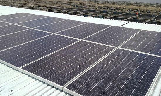 Solar Fish Farm