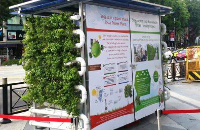 SEA Games Urban Farming